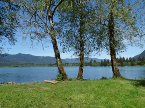 The view of Lake Quinault looking out from Gatton Cove.