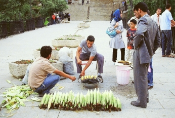Corn Vendor--Hamedan
